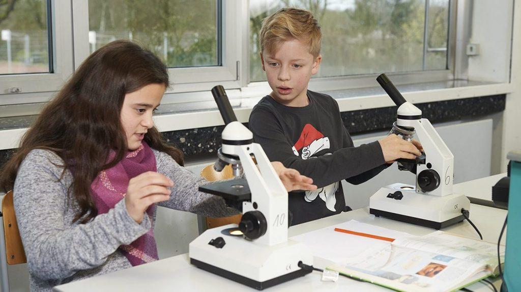 Mikroskopieren macht Spass