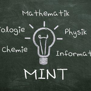 """Schüler auf der Suche nach """"MINT-Phänomenen"""" im Alltag"""